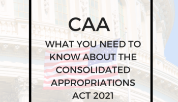 Consolidated Appropriations Act Provides Relief to Individuals and Businesses